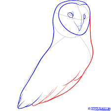 How To Draw A Barn Owl Step 8 | Animatronics | Pinterest | Drawings Country Barn Art Projects For Kids Drawing Red Silo Stock Vector 22070497 Shutterstock Gallery Of Alpine Apartment Ofis Architects 56 House Ground Plan Drawings Imanada Besf Of Ideas Modern Best Custom Florida House Plans Mangrove Bay Design Enchanted Owl Drawing Spiral Notebooks By Stasiach Redbubble Top 91 Owl Clipart Free Spot Drawn Barn Coloring Page Pencil And In Color Drawn Pattern A If Youd Like To Join Me Cookie
