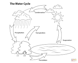 Great Water Cycle Coloring Page 34 For Your Books With