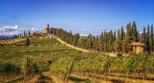 Wallpaper Tuscany Italy Castello Banfi Nature Fields Trees Shrubs