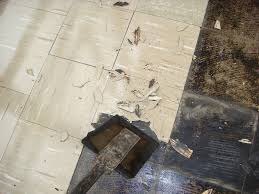 Covering Asbestos Floor Tiles With Hardwood by What Are Asbestos Floor Tiles