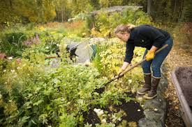 Here s how to make good gardening use of this warm fall weather