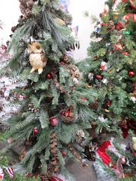 Silvertip Christmas Tree by Lots Of Trees For Sale Roseville Soroptimist Boutique Fundraiser