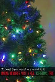 Best Variety Of Christmas Tree by Viac Ako 10 Najlepších Nápadov Na Pintereste Na Tému Real