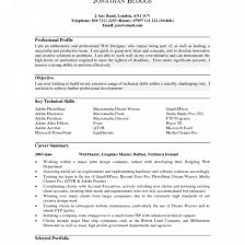 Impressive Resume Profile Template Examples For College Students Professional
