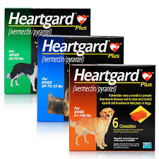 heartgard for cats heartgard plus for dogs heartworm chewables petcarerx
