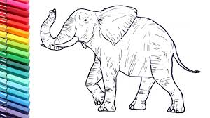 Drawing And Coloring A Elephant