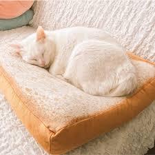 cat sofa aliexpress buy pet products cat house toast bed cushion sofa