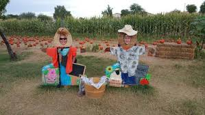 Macdonald Ranch Pumpkin Patch Hours by 11 Pumpkin Patches To Visit In Arizona