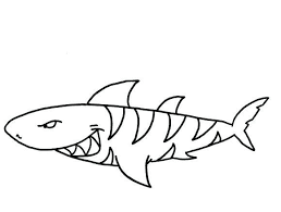 Coloring Page Of Shark Corresponsables Co