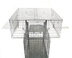 live cat trap tomahawk neighborhood cat drop trap home pest