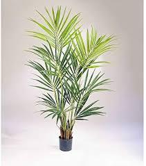 artplants de künstliche kentia palme 192 blätter 200cm hochwertige dekopalme kunstpalme