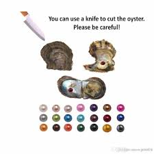 100 Where Is Dhgate Located 2019 DHL Wholesale Saltwater Round Akoya Pearl Oyster Mixed Colors