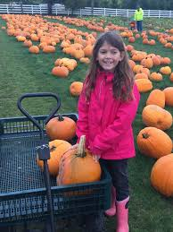 Roloff Pumpkin Patch by Roloff Farms