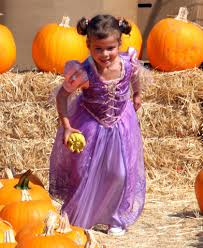 Visalia Mooney Pumpkin Patch by Shawns Pumpkin Patch A Lot Of Fun Things To Do All In