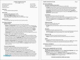 Child Care Resume Examples Fresh 22 Elegant Support Daily Kids
