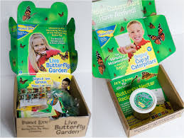Insect Lore Original Butterfly Garden Review
