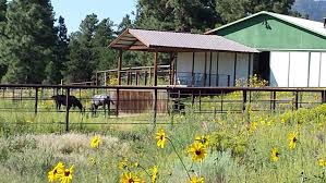 ARENA & BARN ON 5 ACRES IN THE PINES, READY... | Flagstaff ... Best 25 Outdoor Wedding Venues Ideas On Pinterest Whimsical Wendy Thibodeau Photography Shelby Sams Tree Farm Weddings Go Rustic At A Variety Of Wpa Settings Triblive Wallpapers Tagged With Barns Country Houses Playing Cold Town 38 Best Big Sky Barn Images Weddings Williamsport Wedding Venues Reviews For Back To The Future Peabody Farm Location Revealed Beyond The The Place Home Wi For Sale 10 20 Acres New Old Farmhouses David Parks Mr Mrs Ho At Crooked Whitewoods Venue Wapwallopen Pa Weddingwire Southern Pines