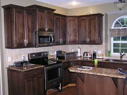 kitchen dark stained kitchen cabinets dark or light stained
