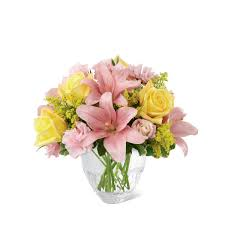 Ftd Flower Coupons - Medieval Times Coupon Codes 2018 Ftd Flowers Discount Code Same Day Delivery Martial Arts Deals Promo Code Coupon Trivia Crack Safeway Flowers Coupon Shoprite Coupons Online Shopping The Stunning Beauty Bouquet By Ftd Reading Buses Canada A For Ourworld Coach Factory Member Guide Ftdi Issuu May 2018 Park N Fly Codes Mothers Buy A Gift Card Get Freebie At These Glossier Promo Code Canada Youve Heard The Hype About Lifestyle Fitness