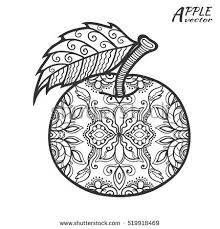 Best 25 Apple Sketch Ideas On Pinterest