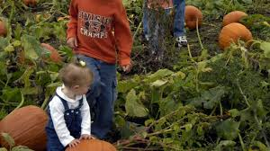 Woodside Pumpkin Festival by Fun Fall Activities On Long Island