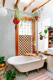 Best Plant For Dark Bathroom by Best 25 Jungle Bathroom Ideas Only On Pinterest Bathroom Plants