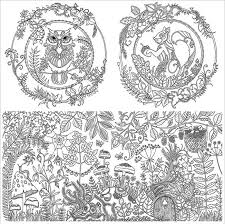 Anti Stress Colouring Book Enchanted Forest