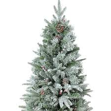 Christmas Trees Types real christmas trees types pictures reference