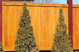 Noise Barriers - What Kind Of Fence Blocks Road Sounds? Noise Barriers What Kind Of Fence Blocks Road Sounds How To Reduce Noises In Your Outdoor Living Spaces Youtube Featured Landscape Projects Take Root With Dennis 7 Dees Pollution Versus Quiet Ctemplation Acoustiblok Website To Make Yard Private Hgtv Bamboo Privacy Hedges Are They Good Wild Turkeys Effective Wildlife Solutions Gabion Barrier Walls And Sound Proof Fences Uk Wide 20 Best Front Landscaping Hide Traffic Images On Pinterest Architectural Design Soundproofing Materials