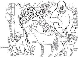 Jungle Coloring Pages Printable Mkumca Org