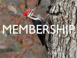 NEWS 118th Annual Audubon Christmas Bird Count Lakewood Circle 2017