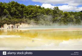 100 Worldwide Pools The Ponds And Pools In The WaiOTapu Thermal Wonderland Near