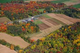 Pumpkin Picking Places In South Jersey by Pumpkin Patch Tranquillity Farms Andover New Jersey