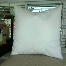 Down Pillow Forms Pillow Forms Walmart Canada – eurogestion