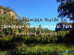 100 Agnes Water Bush Retreat The Ultimate Guide To Carnarvon Gorge National Park Big World