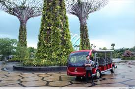 5 Gardens By The Bay Secrets And Stories You Never Knew