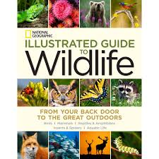 National Geographic Illustrated Guide To Wildlife - National ... National Geographic Backyard Guide To The Birds Of North America Field Manakins Photo Gallery Pictures More From Insects And Spiders Twoinone Bird Feeder Store Birds Society Michigan Mel Baughman Blue Jay Picture Desktop Wallpaper Free Wallpapers Pocket The Backyard Naturalist 2017 Cave Wall Calendar