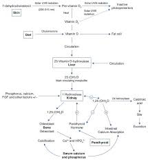 vitamin d deficiency in pregnancy and its impact on the fetus the