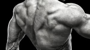 White Pumpkin Seeds Testosterone by 4 Methods To Boost Testosterone With Food T Nation