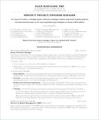Director Resume Sample Creative Samples Project Manager Art Hr India