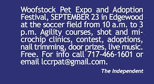 Mccalls Pumpkin Patch Moriarty New Mexico by Mark Your Calendar The Independent