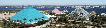Moody Gardens Theme Park Penguin Exhibits