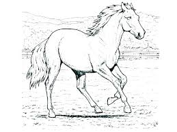 Horse Head Coloring Page Free Table Pages Inspirational Realistic Or Jumping Fresh For
