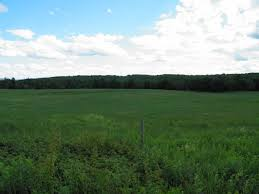 Middleburg Christmas Tree Farm For Sale by Maine Farms And Farmland For Sale United Country Farmland