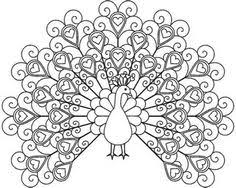 Peacock Coloring Pages For Adults To Print Printable