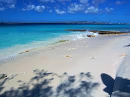 Bellevue Singing Christmas Tree 2016 by Voted 1 Bonaire Beachfront Condo Vinibu Vrbo