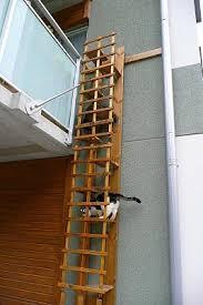 cat stairs drain pipe cat ladder sök på kitteh cat