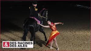 spectacle du cadre noir élite de la cavalerie française