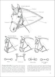My Horse Coloring Book Also Additional Photo Inside Page Colouring