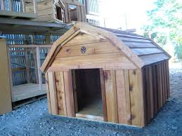 New Custom Barn Style Cedar Dog House | Custom Ac Heated Insulated ... New Custom Barn Style Cedar Dog House Ac Heated Insulated Boarding Photolog Amazoncom Prevue 465 Red Chicken Coop Garden Outdoor The Vaccines Barn Dogs Need Horse Owners Resource Diy Door Pet Condo Sheepy Hollow Farm Age Ecoflex Jumbo Fontana Echk503b Rural King Status Playtime Youtube Badrap Blog A View From The Inside Traing